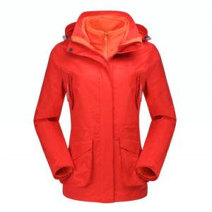 1つのウインドブレイカーの冬のコートに付き女性スキージャケット3つ