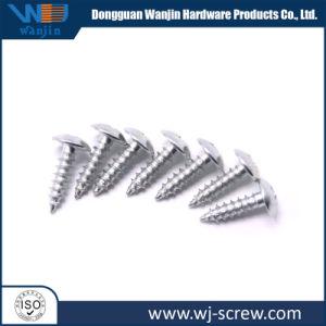 La Chine fournisseur OEM à tête ronde de l'acier aluminium Vis Autotaraudeuse