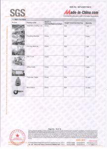 SGS de Gediplomeerde VinylFabriek van de Omheining - Wuhan Dachu 2