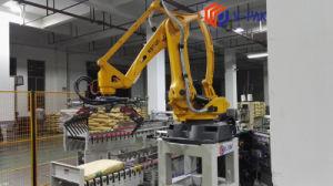 De arbeidsbesparende Machine van Palletizer van de Robot van de Palletisering van het Karton