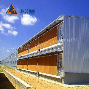 La estructura de acero de las aves de corral la construcción de viviendas