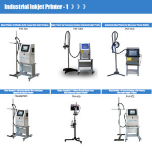 Venda a quente Data da indústria impressora jato de tinta de cor branca (PM-100)