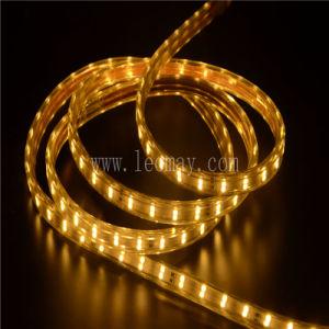 alto indicatore luminoso di striscia di volt SMD5050 LED di 1600lm/M con CE& RoHS 220V