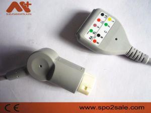 Совместимые Магистральный кабель ЭКГ Philips для тип DIN Leadwires