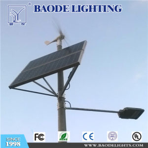 중국 옥외 공급자 6m 폴란드 태양 30W LED 가로등
