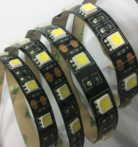 Ce&RoHS ha elencato la striscia di rendimento elevato LED per la barra chiara
