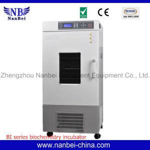 De professionele LCD Incubator van de Lage Temperatuur van de Vertoning met Ce