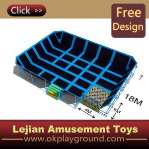 Lits de haute qualité populaire trampoline pour l'intérieur du parc1204-12 (TP)