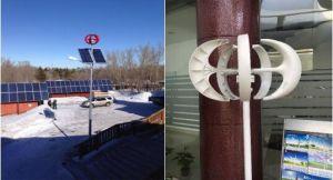 Petit générateur de turbine vertical d'énergie éolienne d'axe de 100W 12V/24V dans à faible bruit