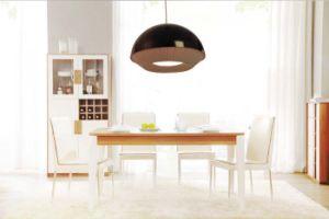 Einfache dekorative moderne hängende Lampen-hängende Beleuchtung im hellen Schwarzen