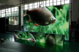 P5 640X640 di alluminio schermo di visualizzazione del LED del Governo della pressofusione il video