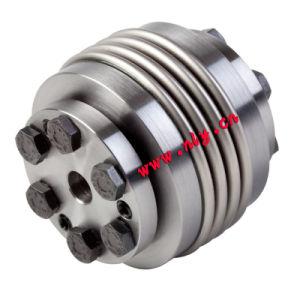 L'acciaio inossidabile Ts1z muggisce l'accoppiamento Using il connettore delle Assemblee di chiusura