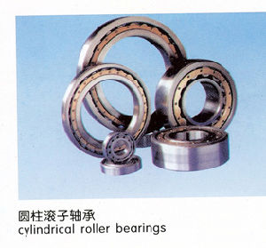 Dotación completa rodamiento de rodillos cilíndricos