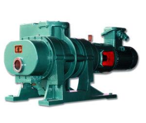 Zjp Wurzel-Vakuumpumpe (Vakuumverstärker)