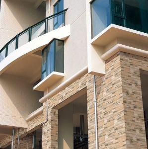 De buiten Rustieke Tegels van het Porselein van de Muur en van de Vloer van Villa en Huis