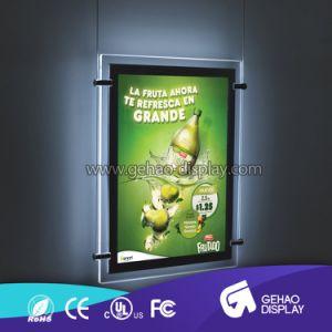 Escaparate de la publicidad colgando con pantalla de LED de alto brillo