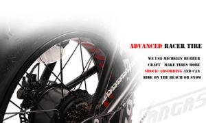 Fantas BMX 36V250W 20inches fetter Reifen-elektrisches Fahrrad