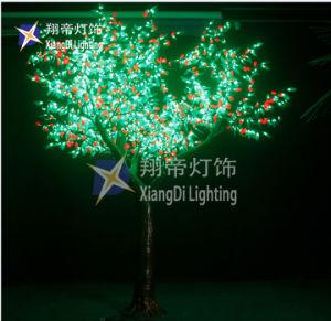 61583866117f6 Día de Fiesta del Árbol de China