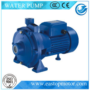 Cpm-2 Submersible Pump per Clean Liquid con Castiron Support