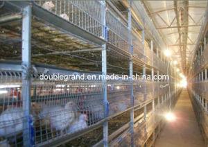 Estructura de acero prefabricados de la casa de aves de corral, gallinero, La Granja