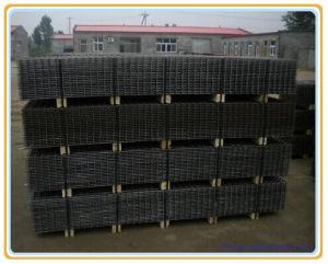 補強されたConcrete Steel Wire Mesh (工場)