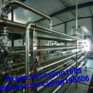 Tube concentrique de purée de fruits stérilisateur tubulaire ou le tube dans le tube de stérilisateur UHT