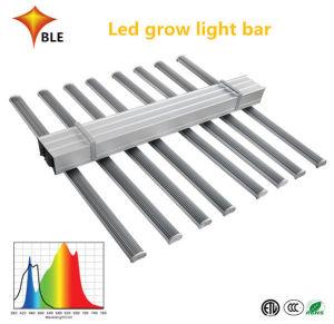 O espectro completo de leds osram crescer planta crescente para sementes de luz LED de luz de crescimento de plantas em crescimento