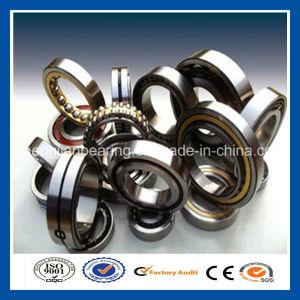 Veículos pesados de carga radial do rolamento de roletes cilíndricos com tamanhos completos