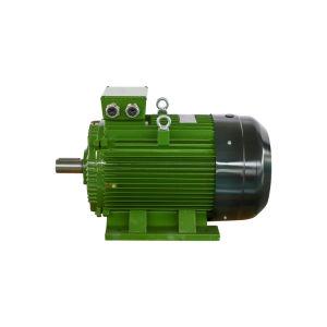 Nouveau ye3 cage écureuil haute puissance de bobine de cuivre de la Chine fabrique des moteurs à induction triphasé AC Moteur électrique