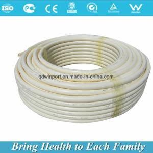 高品質の鉛の管