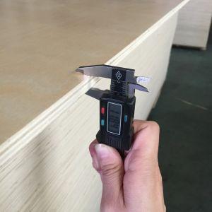 Aufbau-Verpackungs-Pappel-Kern-Pappel stellte Furnierholz gegenüber