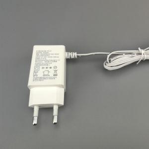 효율성 수준 VI 안전 표를 가진 5.8V AC DC 접합기 또는 힘 접합기