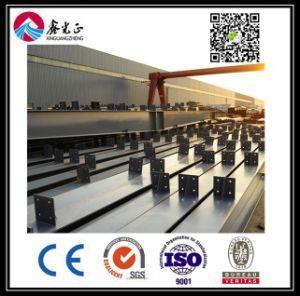 Magazzino personalizzato alta qualità della struttura d'acciaio (BYSS007)