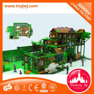 Het bos Labyrint van de Speelplaats van de Apparatuur van de Speelplaats van de Kinderen van het Ontwerp Binnen voor Verkoop
