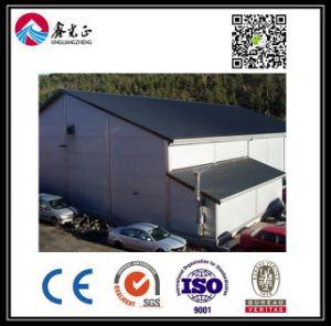 Estructura de acero personalizados de alta calidad Almacén (BYSS040)