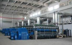 1-500mw Googol Engine Diesel Power Plant Generator
