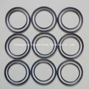 FEP/PFA инкапсулированный уплотнительное кольцо с помощью вайтоновой/FPM основных материалов