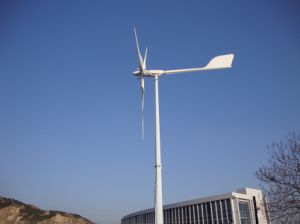 En el tono de la red controlada generador de turbina eólica