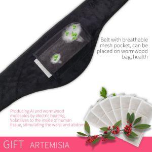 Adelgazamiento de alivio del dolor de espalda masaje caliente caliente Shaper Cinturón