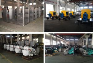 generatore del gas naturale 300kw con il sistema di CHP