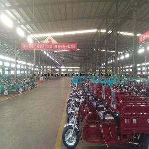 緩やかに150cc Trikeのチョッパー3の車輪の農場の貨物オートバイ