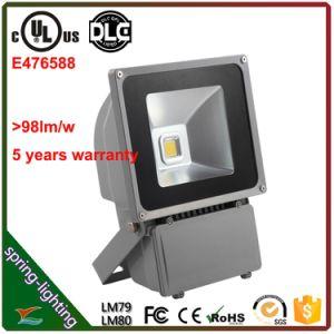 De Schijnwerper van UL E476588 Outdoor IP65 LED 80W