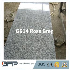 ローズの壁のクラッディングのための灰色の床タイルの花こう岩か庭または舗装