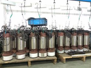 ステンレス鋼の浸水許容の水ポンプ、汚れたポンプ鉱泉ポンプ