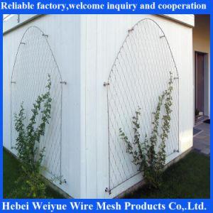 316L Stainless Steel Wire Rope filet à mailles de câble en acier