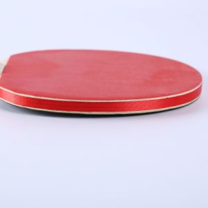 Fabrication de haute qualité à bas prix OEM 2 joueur de tennis de table définie