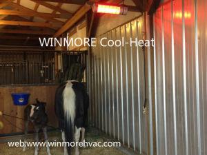 Animal/Aquecedor de infravermelhos de secagem Pet Conforto Animal Animal de pré-aquecedor de modelagem