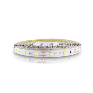 lampada flessibile Non-Impermeabile della decorazione della casa della lampada del nastro del nastro della stringa di illuminazione dell'indicatore luminoso di striscia di 5m 300LEDs RGB LED 3528 DC12V 60ledsm