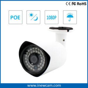 De openlucht Camera van kabeltelevisie 2MP P2p Poe IP met Mic