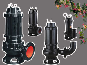 High Quality Cast Iron Electrical Submersible Sewage Water Pump (WQ100-25-11)